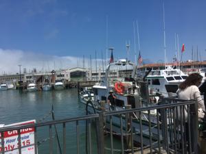 08051311fishermanswharf